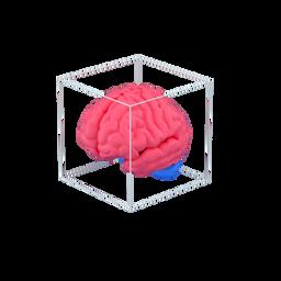 brain-mastermind-cerebrum-organ-intellectual-perspective_icon
