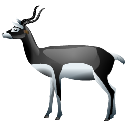 antelopes_icon