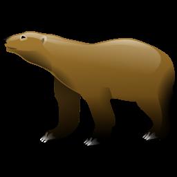 bear_icon