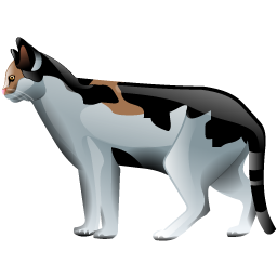 cat_icon