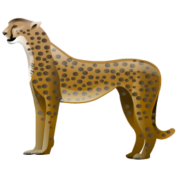 cheetah_icon