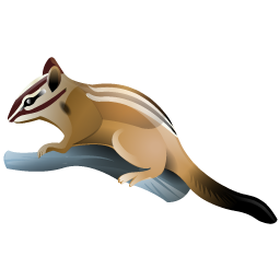 chipmunk_icon