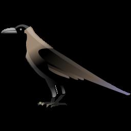 crow_icon