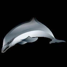 dolphin_icon