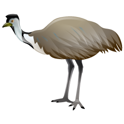emu_bird_icon