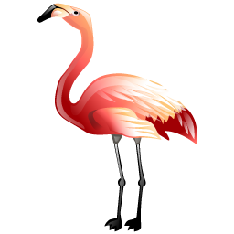 flamingo_icon