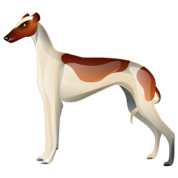 greyhound_icon