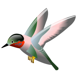 hummingbird_icon