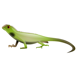 lizard_icon