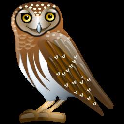 owl_icon