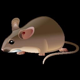 rat_icon