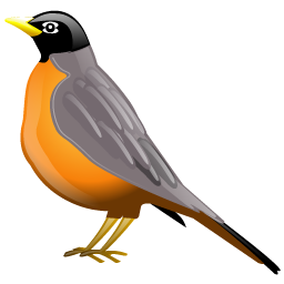 robin_icon