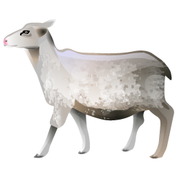 sheep_icon