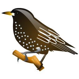 starling_bird_icon