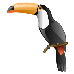 toucan_bird_icon
