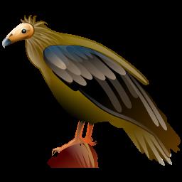 vulture_icon