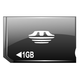 memory_stick_duo_icon