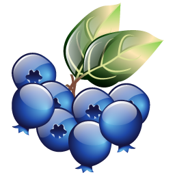 blueberries_icon