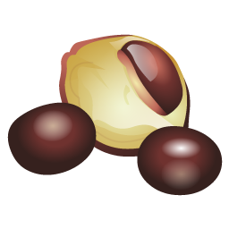 chest_nuts_icon