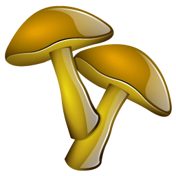 mushrooms_icon