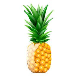 pineapple_icon