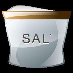 salt_icon