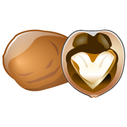 walnut_icon