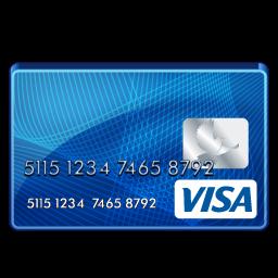 visa_standard_icon