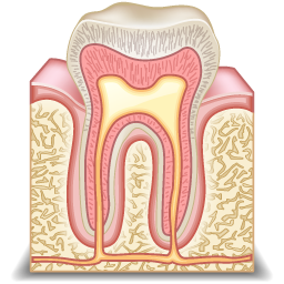 odontology_icon