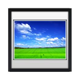image_field_icon
