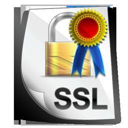 ssl_certificate_icon
