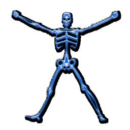 skeleton_icon