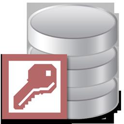 access_icon