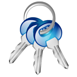 car_keys_icon