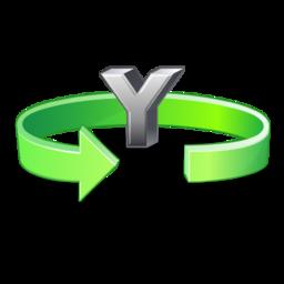 flip_y_icon