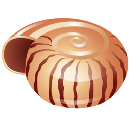 shell_icon