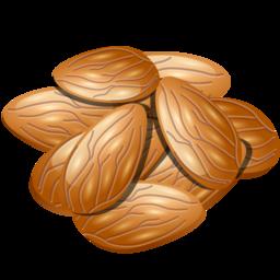 almond_icon