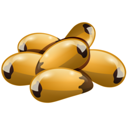 brazil_nuts_icon