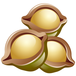 macadamia_nuts_icon