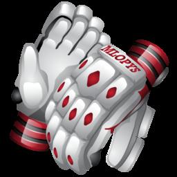 cricket_gloves_icon