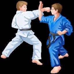 judo_icon