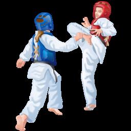 taekwondo_icon