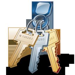 car_keys_icon