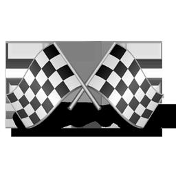 race_icon