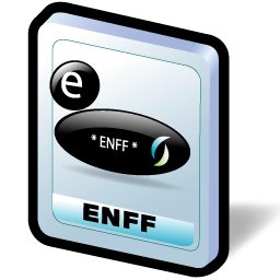 enff_format_icon