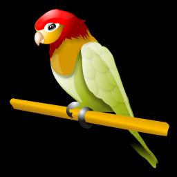 australian_parakeet_icon