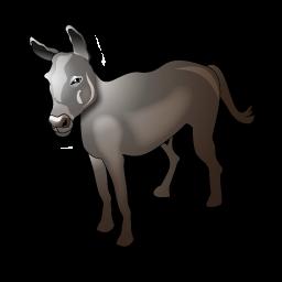donkey_icon