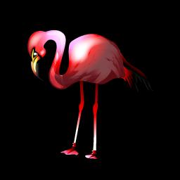 flamingo_icon