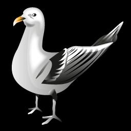 gull_icon