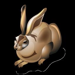 hare_icon